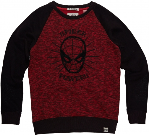 House Of Fraser Disney Courage & Kind Boys Embroidered Spider Powers Sweatshirt