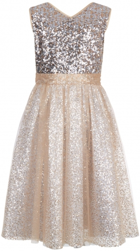 Monsoon Girls Twinkle Tara Dress