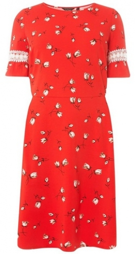 Dorothy Perkins Womens **DP Curve Red Floral Print Sundress- Red, Red Dress