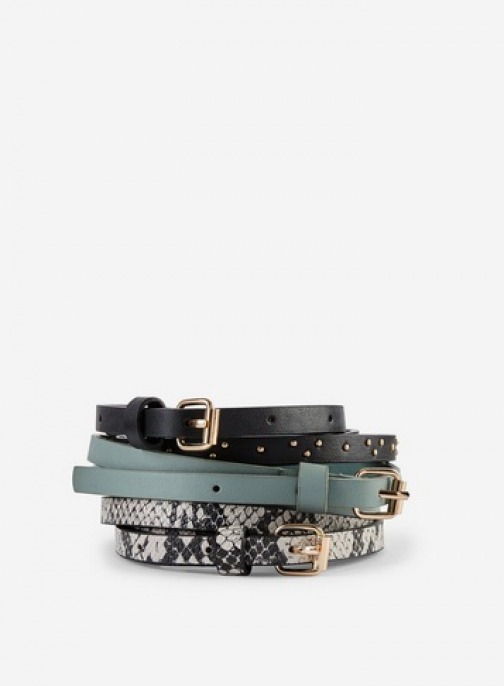 Dorothy Perkins 3 Pack Multi Coloured Skinny Belt