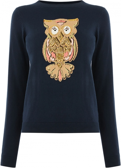 Oasis OWL EMBROIDERY Jumper
