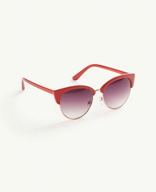 Ann Taylor Oversized Cateye Sunglasses