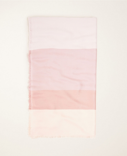 Ann Taylor Colorblock Ombre Scarf