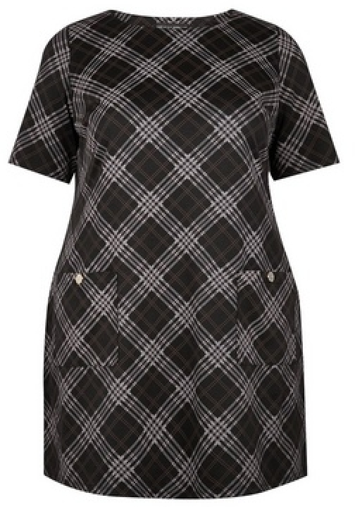 Dorothy Perkins Dp Curve Multi Colour Checked Shift Dress