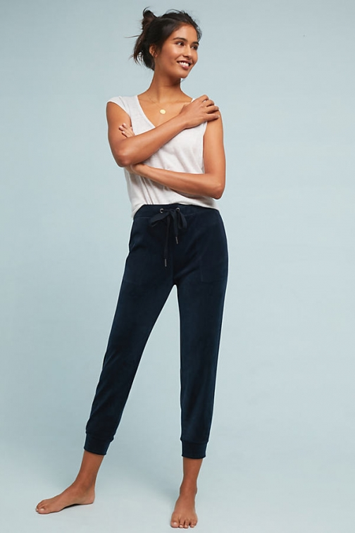 Anthropologie Velour Joggers - Blue, Size Athletic Pant