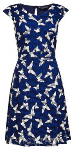 Dorothy Perkins Blue Mono Butterfly Printed Dress