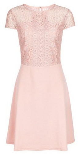 Dorothy Perkins Pink Scuba Lace Top Fit And Flare Dress