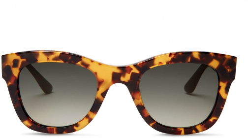 Toms Chelsea Havanna Brown Brown With Olive Green Gradient Lens Sunglasses