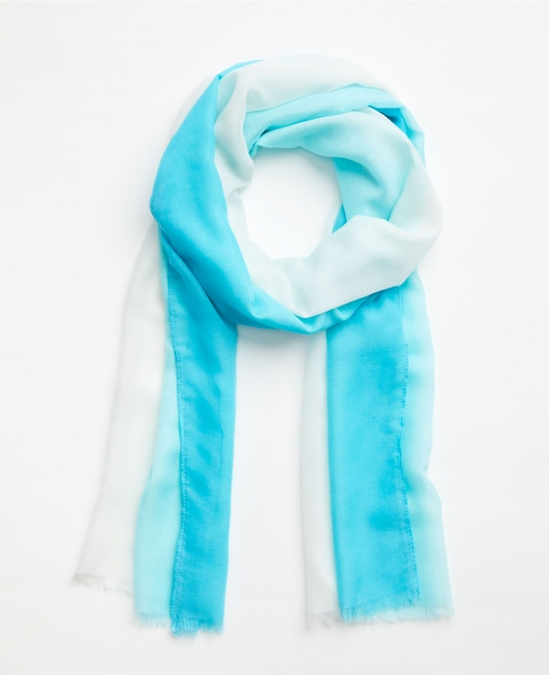 Ann Taylor Factory Ombre Scarf