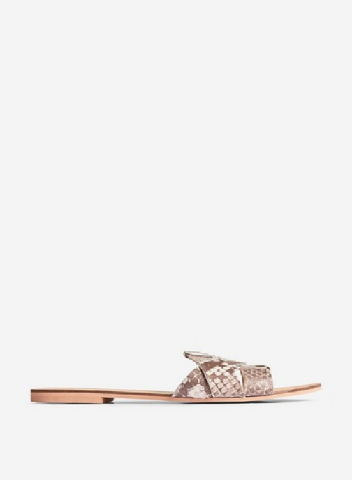 Dorothy Perkins Multi Coloured Leather 'Jaxon' Slider