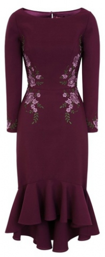 Chi Chi London Burgundy Embroidered Bodycon Dress