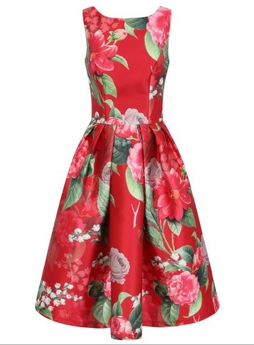 Dorothy Perkins Womens *Chi Chi London Red Floral Print Midi - Red, Red Skater Dress